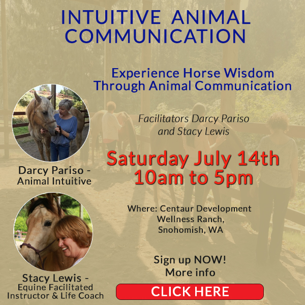 Darcy Pariso July 14th animal communication workshop